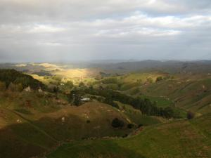 Green, hilly farmcountry as far as you can see (New Zealand)